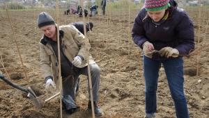 Nauka sadzenia w Winnicy Jasło